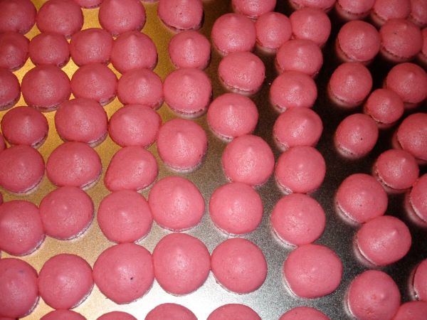 Ill fated mirangues