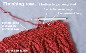 Crochet Button Loops