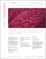 Chrysanthemum Shawl by Tin Can Knits