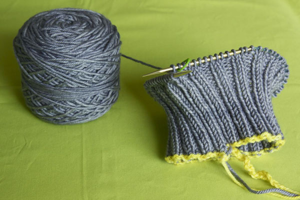 Provisional cast on and ribbing have been worked