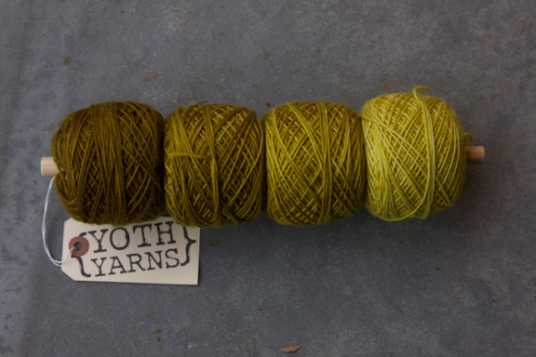 YOTH Gradient. 800 Yards of Little Brother