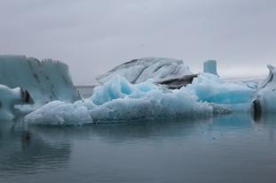 Yay Icebergs