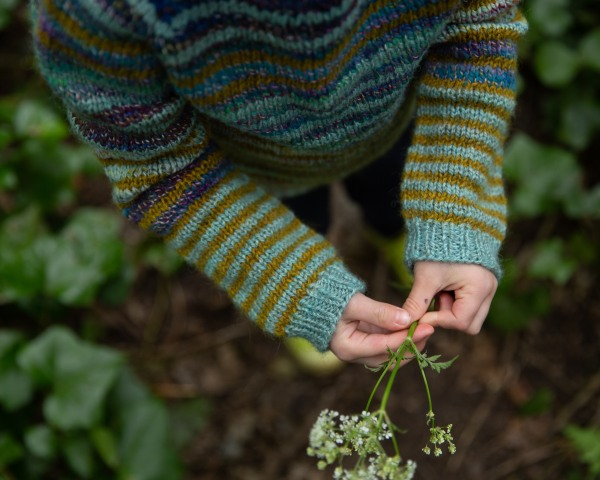 A child holds a flower in small hands, the cuffs of her sweater are striped gold and pale teal.