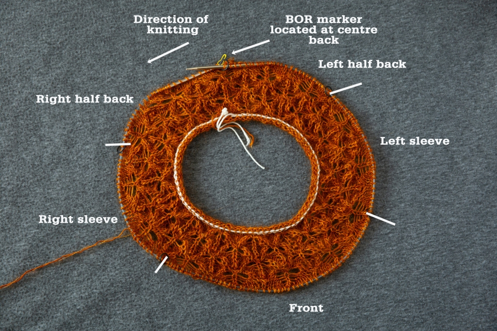 doughnut-shaped lace yoke in progress with annotations showing which sections will become front, sleeves, and back