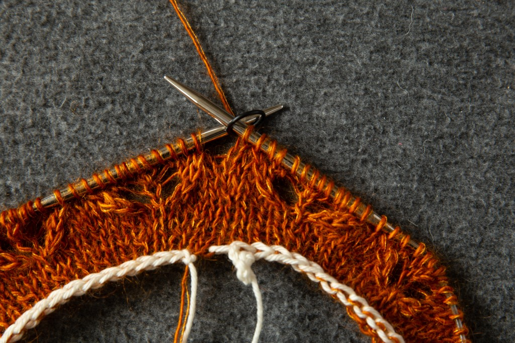 a provisional cast-on knitted fabric, and lace pattern on circular needles