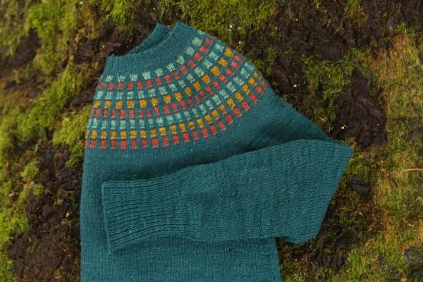 yoke sweater laid flat on a mossy rock