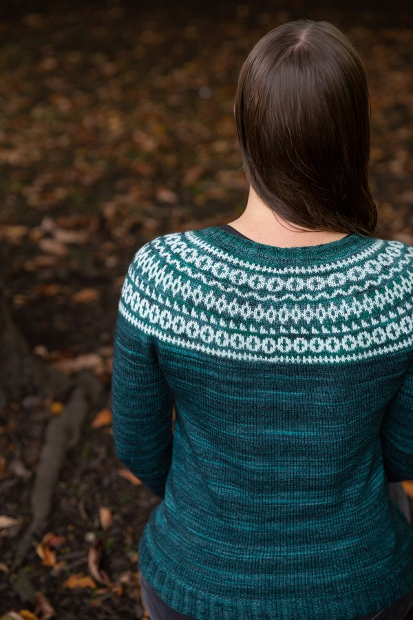 a back view of a colourwork yoke sweater
