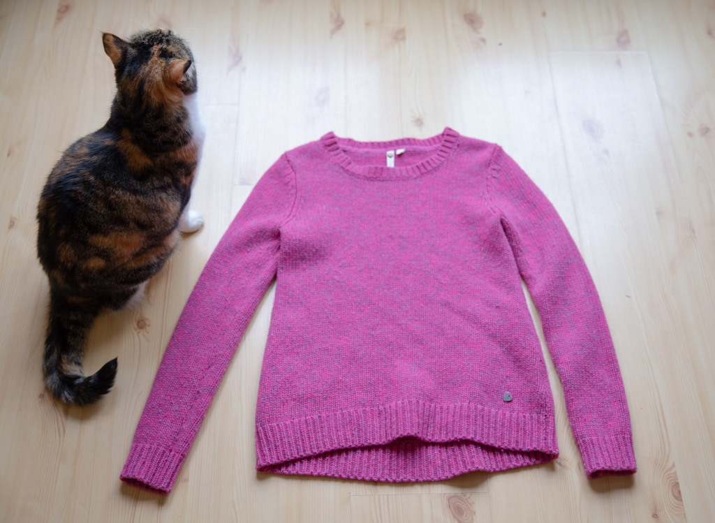 a pink sweater laid flat, and a cat